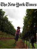 The New York Times: Vineyard Hopping, in Maryland?